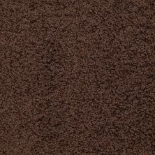 Shaw Floors Striker Dark Fudge 00701_52R36