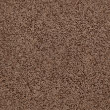 Shaw Floors Striker Brown Sugar 00702_52R36