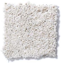 Shaw Floors Cardinal Fine Lace 00100_52R37