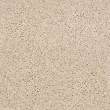 Shaw Floors Cardinal Custard 00104_52R37