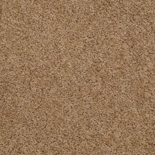 Shaw Floors Cardinal Dried Oak 00201_52R37