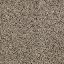 Shaw Floors Cardinal River Rock 00300_52R37