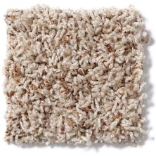 Shaw Floors Acworth Thatch 00720_52R83
