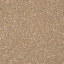 Shaw Floors Foundations Passageway II 15 Classic Buff 00108_52S25
