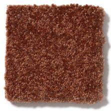 Shaw Floors Foundations Passageway II 15 Gingerbread 00602_52S25