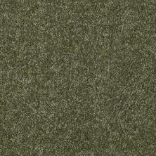 Shaw Floors Town Creek II Sage Leaf 00302_52S30