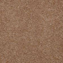 Shaw Floors Town Creek II Ash Blonde 00701_52S30