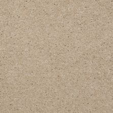 Shaw Floors Town Creek III Linen 00107_52S32