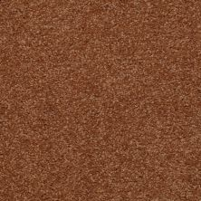 Shaw Floors Town Creek III Soft Copper 00600_52S32