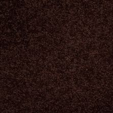 Shaw Floors Town Creek III Dark Roast 00709_52S32