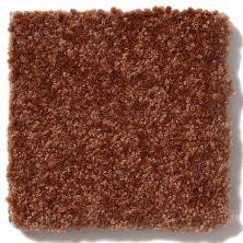 Shaw Floors SFA Passageway III Gingerbread 52S26_00602