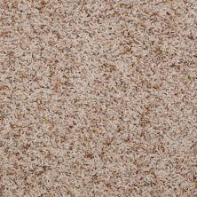 Shaw Floors SFA Maybrook Birch 00165_52S87