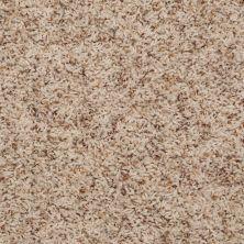 Shaw Floors SFA Maybrook Sand 00263_52S87