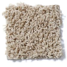 Shaw Floors SFA Complements Wild Straw 00106_52T63