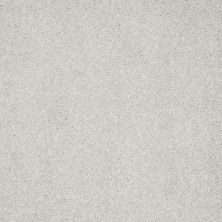 Shaw Floors Anso Colorwall Design Texture Platinum 12′ Putty 00125_52T73