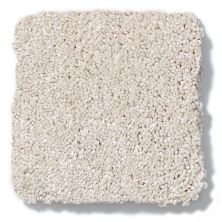 Shaw Floors Anso Colorwall Design Texture Platinum 15′ Dunes 00123_52T74