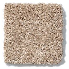 Shaw Floors Anso Colorwall Design Texture Platinum 15′ Townhouse Taupe 00700_52T74