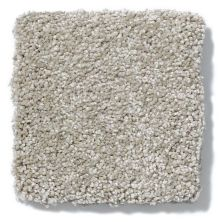 Shaw Floors Anso Colorwall Design Texture Platinum 15′ Warm Oatmeal 00722_52T74