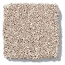 Shaw Floors Anso Colorwall Design Texture Platinum 15′ Pueblo 00740_52T74