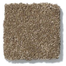 Shaw Floors Anso Colorwall Design Texture Platinum 15′ Latte 00760_52T74