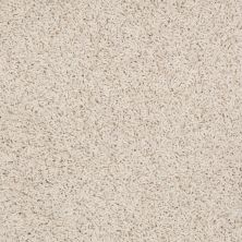 Shaw Floors Guess Work (s) Rich Cream 00101_52T99
