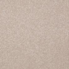 Shaw Floors Shaw Floor Studio Porto Veneri II 15′ Cloud 00102_52U50