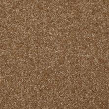 Shaw Floors Shaw Floor Studio Porto Veneri II 15′ Belt Buckle 00702_52U50