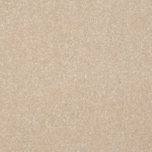 Shaw Floors Shaw Floor Studio Porto Veneri I 15′ Ecru 00103_52U55