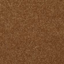 Shaw Floors Shaw Floor Studio Porto Veneri II 12′ Brass Button 00704_52U56