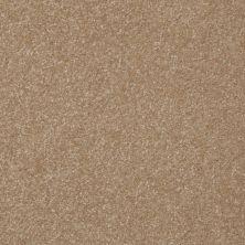 Shaw Floors Shaw Floor Studio Porto Veneri III 15′ Sea Grass 00700_52U59
