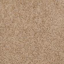 Shaw Floors Shaw Floor Studio Vigo French Bread 00200_52U75