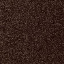 Shaw Floors Town Creek I 15′ Walnut 00706_52V12