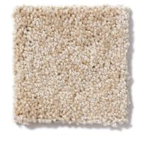 Shaw Floors Skycrest 12′ Bird Seed 00108_52V20