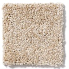 Shaw Floors Skycrest 15′ Bird Seed 00108_52V21