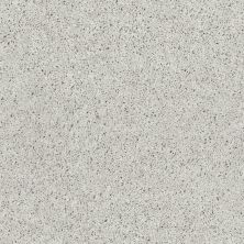 Shaw Floors Northern Parkway Dove Grey 00510_52V34