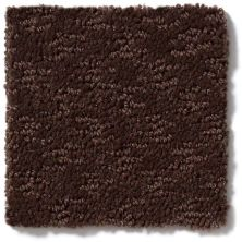 Shaw Floors More Is More Mocha Chip 00705_52V35