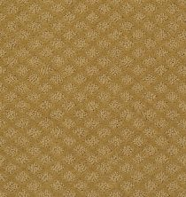 Shaw Floors Padova Golden Wheat 00201_52V37
