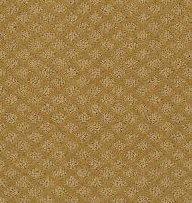 Shaw Floors Padova Golden Wheat 00201_52V37