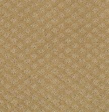 Shaw Floors Padova Natural Wood 00701_52V37