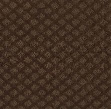 Shaw Floors Padova Mocha Chip 00705_52V37