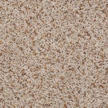 Shaw Floors Jones Beach Sand Swept 00100_52V38