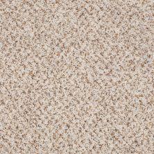 Shaw Floors Jones Beach Snow Drift 00110_52V38