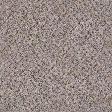 Shaw Floors Jones Beach Greige 00510_52V38