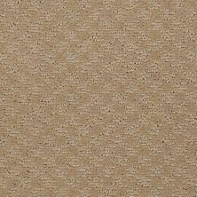 Shaw Floors SFA Westbourne Field Stone 00105_52V44