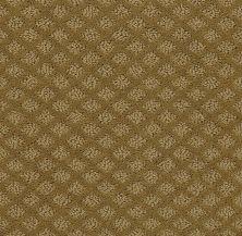 Shaw Floors SFA Westbay Fresh Khaki 00700_52V46