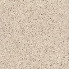 Shaw Floors Shaw Floor Studio Best Show Slivered Almond 00103_52V50