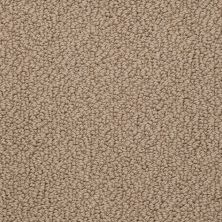Shaw Floors SFA Hidden Wonders Sandstone 00118_52X80