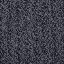 Shaw Floors SFA Hidden Wonders Gun Metal 00401_52X80