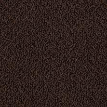 Shaw Floors SFA Hidden Wonders Brown Sugar 00708_52X80