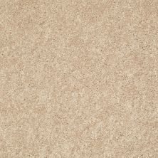 Shaw Floors Mareno Valley I Asian Silk 00201_52Y34